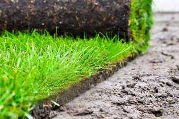 Pest, Weed & Fertilization